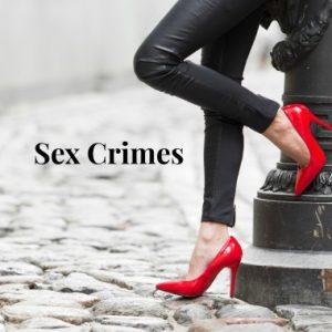Criminal Defense Lawyers Schmidt National Law Group 6